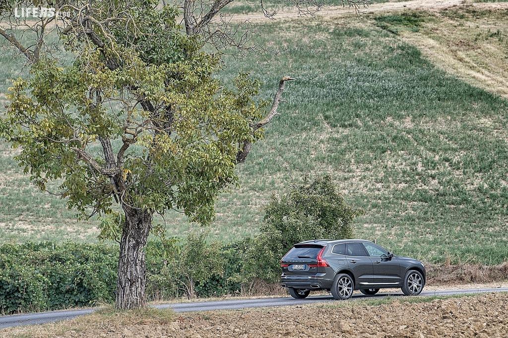 Nuovo XC60 Volvo: tributo alla scuola scandinava!